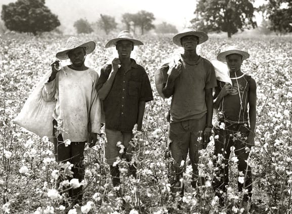 Cotton made in Africa by Albert Watson