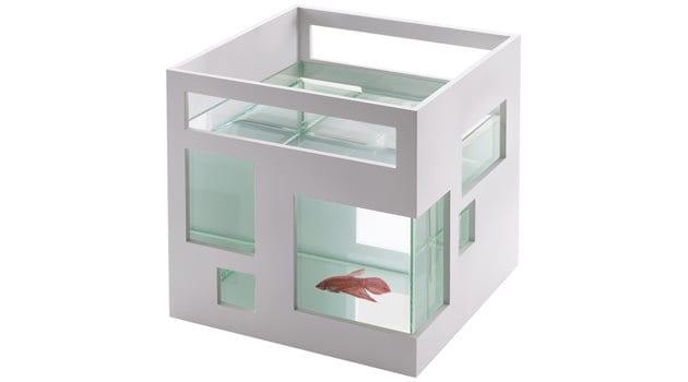 Fischhotel statt Aquarium