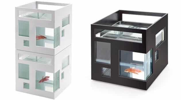 Aquarium-02