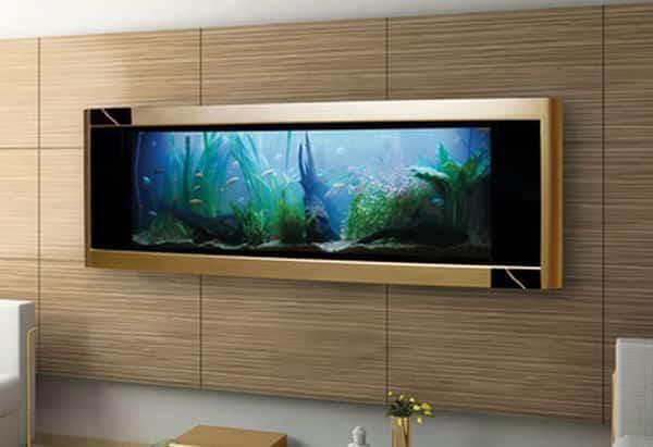 Ein Aquarium als Designobjekt