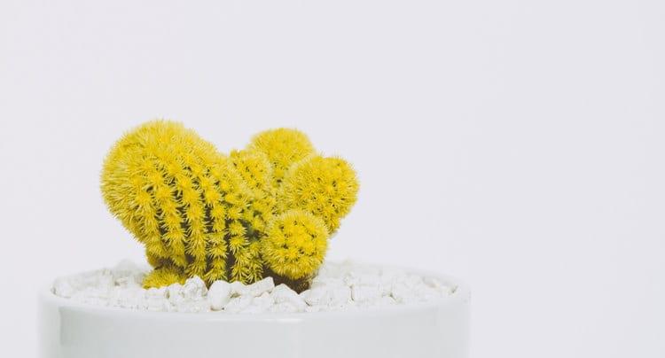 Hello Yellow: Gelb in der Inneneinrichtung