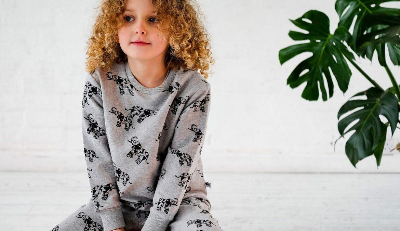 Hellgrauer Unisex-Sweat aus 100% superweiche Bio-Baumwolle nach Global Organic Textile Standard, Foto: MAI (Making Animals Important)